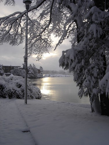 wintery_view