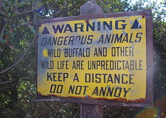 lovely_warning