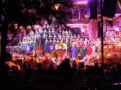 Disneyland in December (44)