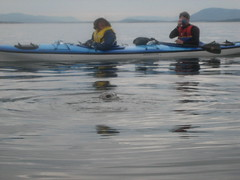 Sea otter and pup surprise kayakers in Washington State's San Juan Islands
