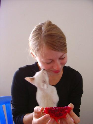 kissy Tien