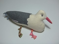 Silver Gull - Coastal Bird series