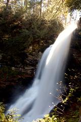 Dry Falls Silky