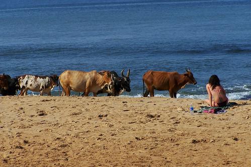 La plage, c'est sacré