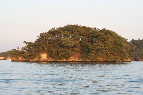 松島灣裡的島嶼