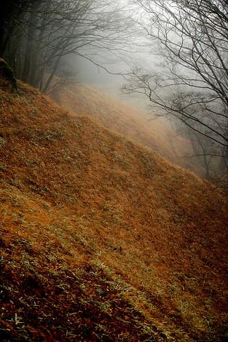 Okutama Trail