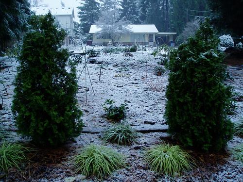 First Snow RHR