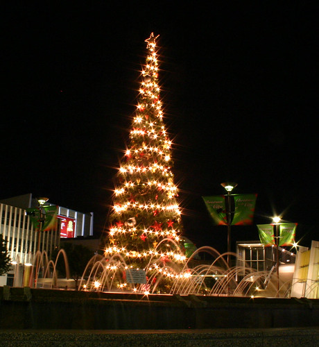 Christmas Tree in front of the Canberra Theatre