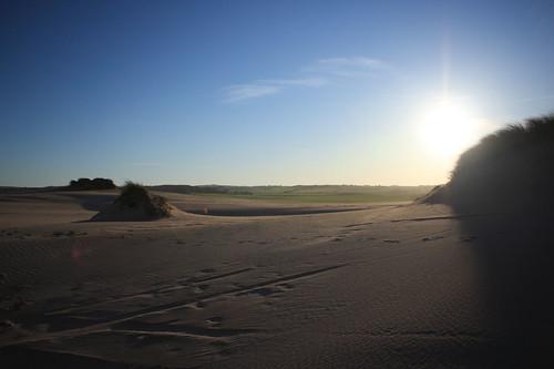 Balmedie beach 070510