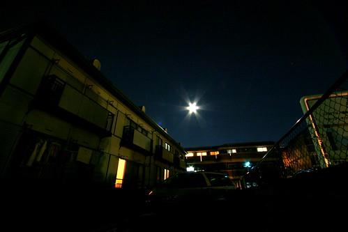 中秋の名月(一日遅れ)
