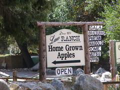 Oak Glen Orchards (3)