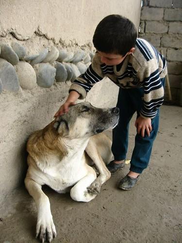 My dog is the best! (Sarazm Village, Tajikistan) / 僕の犬は最高!(タジキスタン、サラザム村)