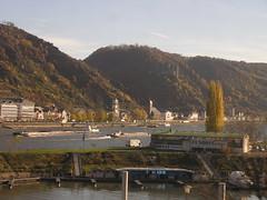 Rhine fall foliage