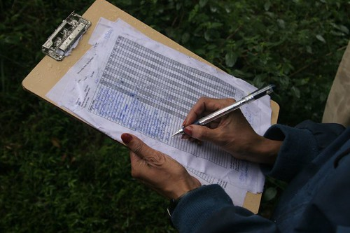 IMG_0022 Bird Survey notes