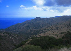 catalina_ocean_vista2