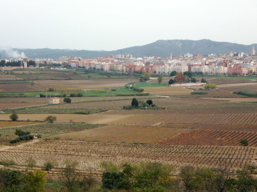 The Town from the Hillside, Vilafranca