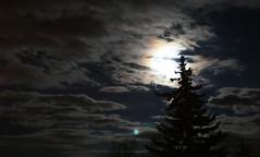 Mondlicht 2