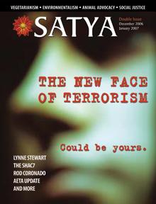 Satya - December 2006