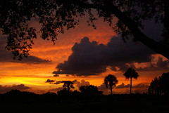 Florida Sunset photo by dotnethed
