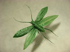 Flying Katydid photo by MABONA ORIGAMI