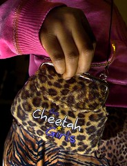 Cheetah Girls Purse Detail