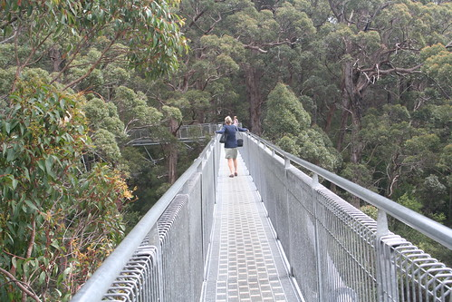 Pam at the Valley of the Giants Aerial Walk