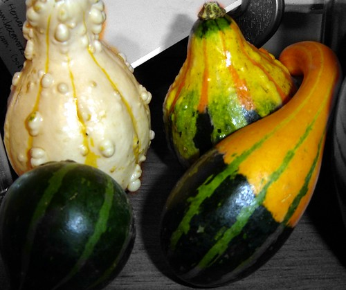little gourds