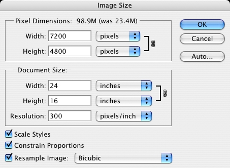 Photoshop: Select the image size