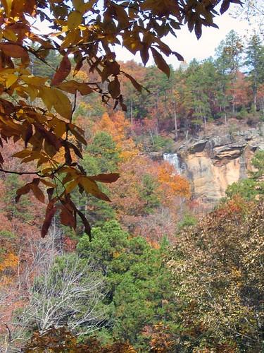 Toccoa Falls1