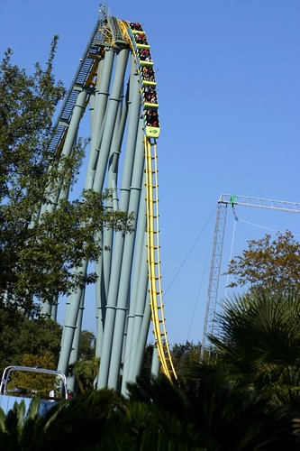 Sea World - Roller coaster