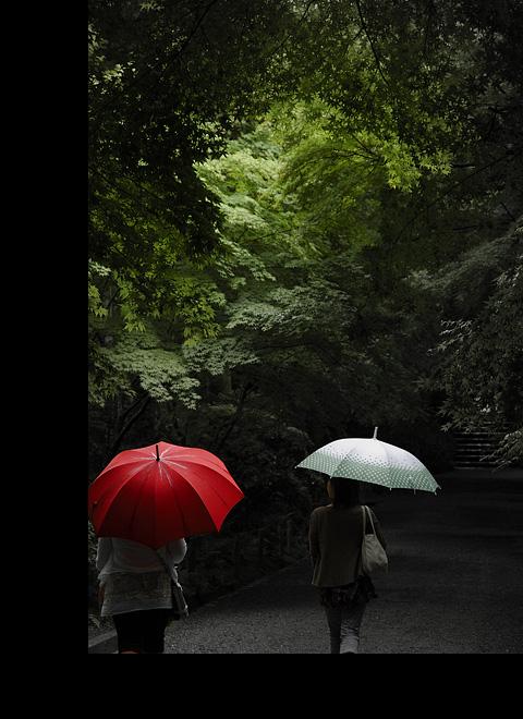 雨の中で、森の中に、