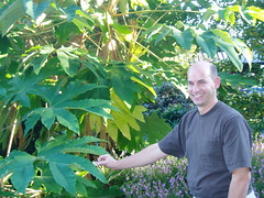 Richie with Tetrapanax