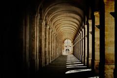 Bordeaux - Teatro dell'opera photo by Iguana Jo