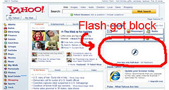 flash block, blockflash, block flash, blockflash firefox extension, blockflash firefox plugin