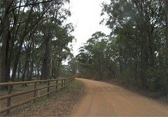 the road to Bou-saada Winery, Mittagong