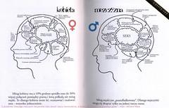 kobieta-mezczyzna-mozgi-jpg