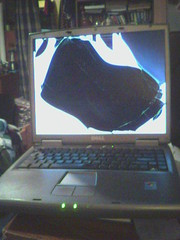 Dell Inspiron 1150 with Broken Screen