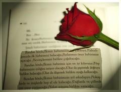 Ve aşk evliliğin ellerinden tuttu... photo by GamZeynel http://haydimutfaga.blogspot.com/