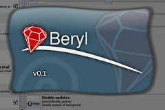 Beryl 0.1 Splash Screen