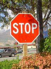 stop-bush