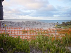 Orange plastic mesh barrier blocking access to beach and calm water