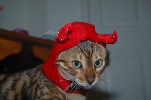 Devil_head