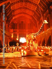Dinosaur Hall - WPOY 2006