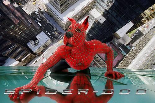 Spider man Scooby doo
