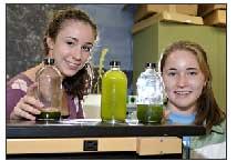 Mit algae biodiesel presentation