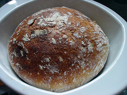 no-knead bread, take two