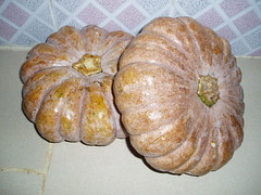 Pumpkin Treats 3 December 2006