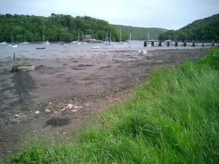 River Dart, Dittisham