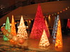 Christmas Trees: All Shapes, All Sizes