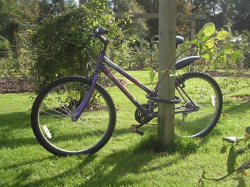 Mon vélo au parc